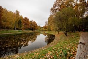 Золотая осень в Лианозовском парке