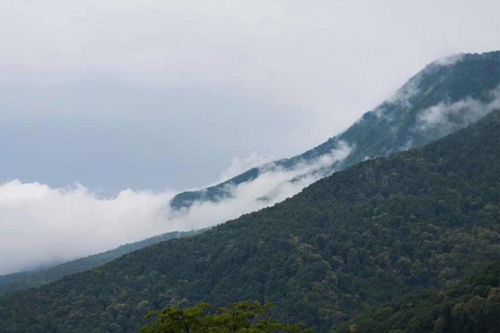 Вид на туман в горах с балкона номера в апарт-отеле Горная Резиденция