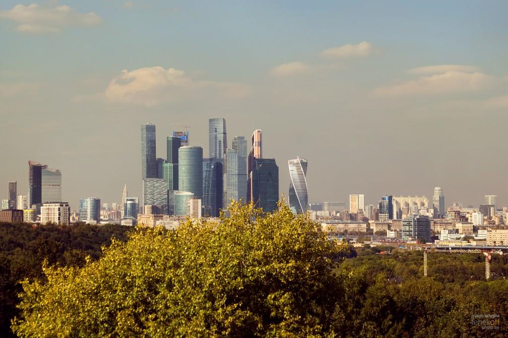 Вид на Москву и Москву-Сити со Смотровой