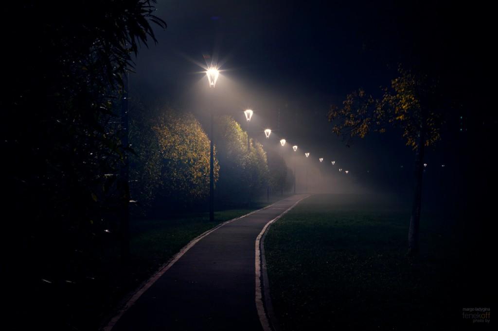 Сказочный туман в Лианозово