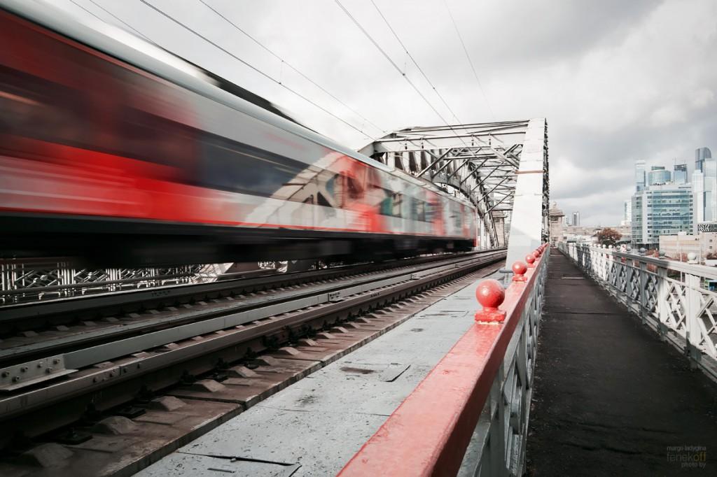 Ласточка на Краснолужском мосту