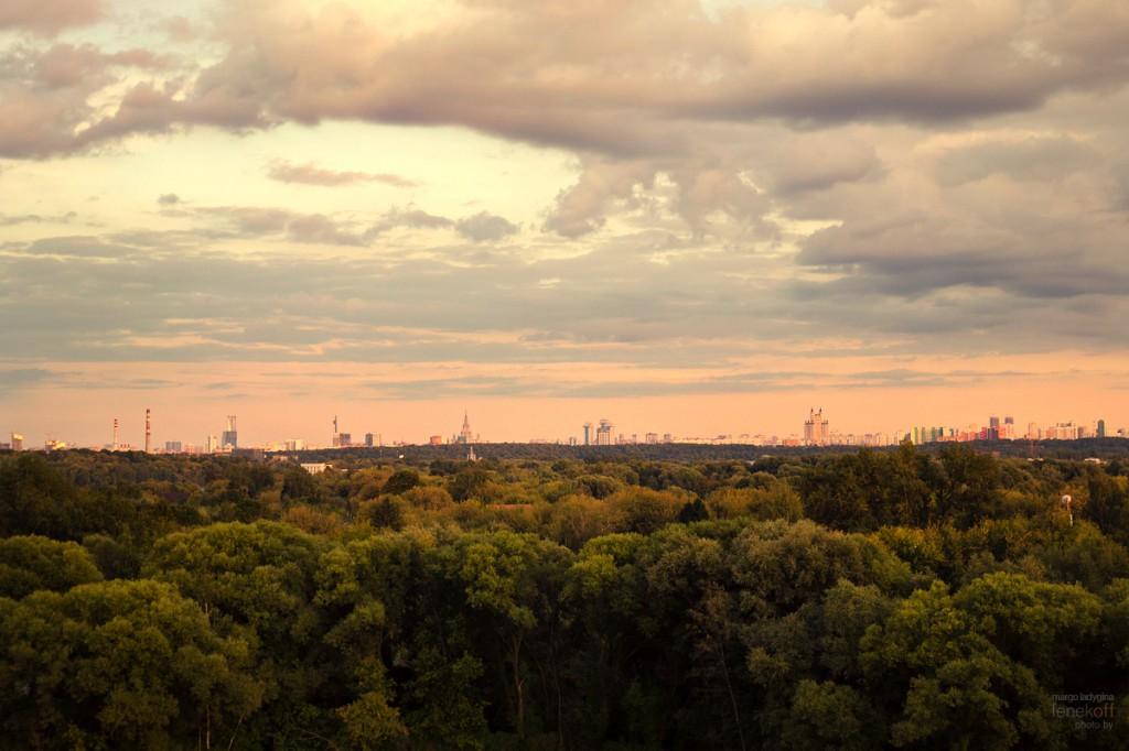 Вид с Живописного моста