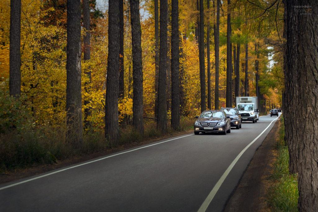 Дорога, по которой ехал Штирлиц с Клаусом